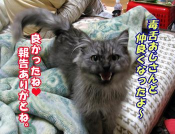 Fukutootto51