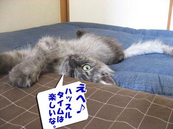 Hassuru2