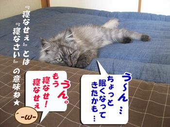 Hassuru3_2