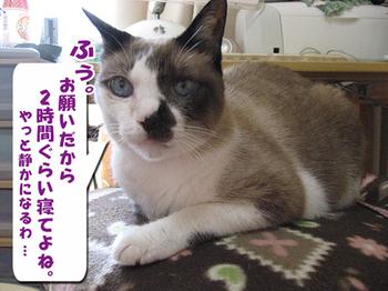 Hassuru5