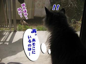 09318hinatabokko1