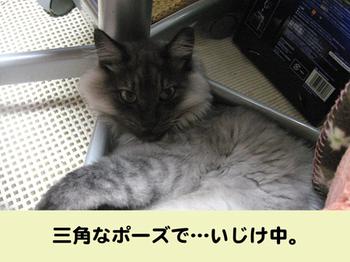 Urafukubatoru4