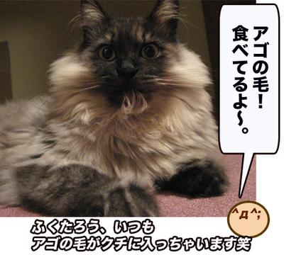 Fukuagoke