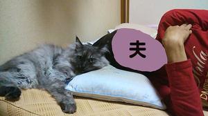 Fukutootto1011