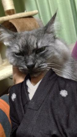 Fukuryouma1326_3